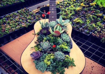 Downcycling guitare jardiniere